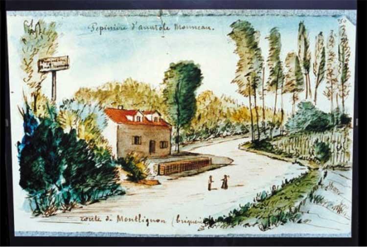 Pépinière Anatole Monneau